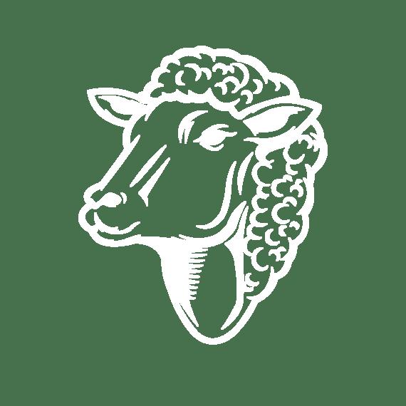 Машинки для стрижки овец